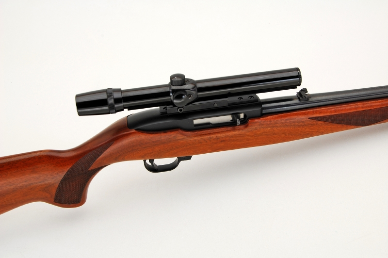 RUGER MODEL 10/22 CARBINE - CALIBER 22 LONG RIFLE SEMI AUTO & 4X SCOPE - Picture 1