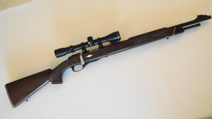 REMINGTON - **NYLON 12** .22 BOLT ACTION TUBE FEED AND SCOPED - Picture 1
