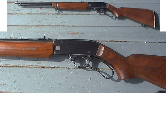 Westernfield M865 PALOMINO 22 LR Lever Rifle - Picture 1